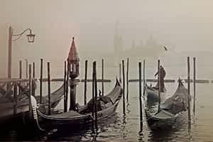 web designer Venezia